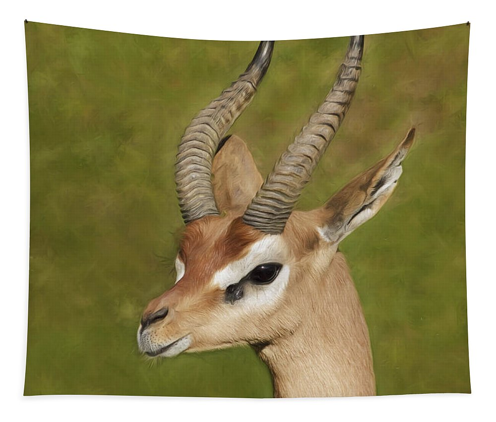 Gazelle Tapestry featuring the photograph Gazelle by Wes and Dotty Weber