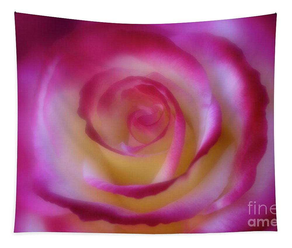 Anniversary Tapestry featuring the photograph Gentle Curves by Teresa Wilson
