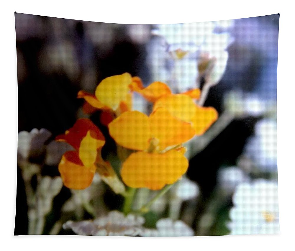 Yellow Tapestry featuring the photograph Gentle Yellow And White by Debra Lynch