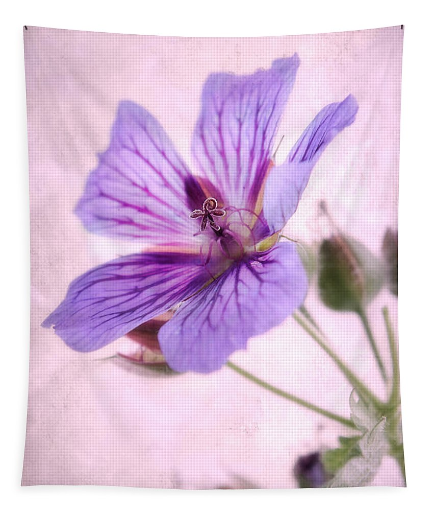 Geranium Maculatum Tapestry featuring the photograph Geranium Maculatum by John Edwards