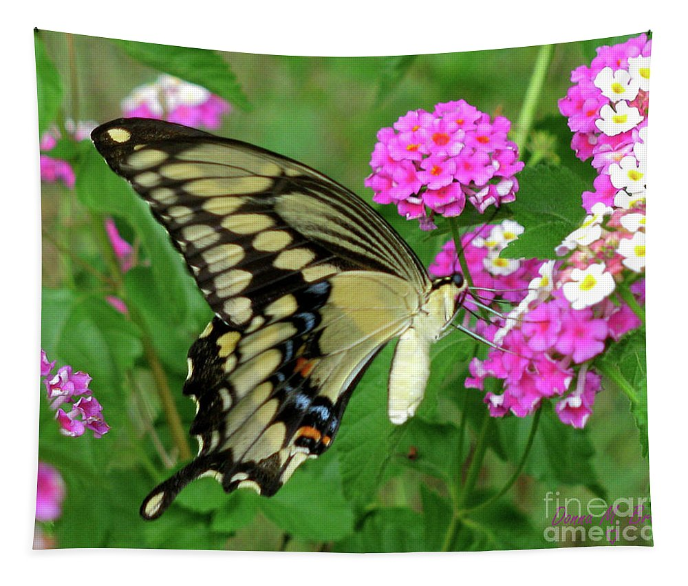 Insect Tapestry featuring the photograph Giant Swallowtail Butterfly IIi by Donna Brown