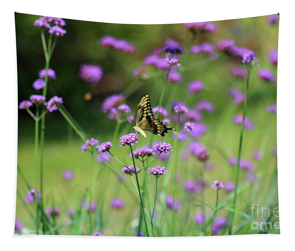 Animal Tapestry featuring the photograph Giant Swallowtail Butterfly In Purple Field by Karen Adams