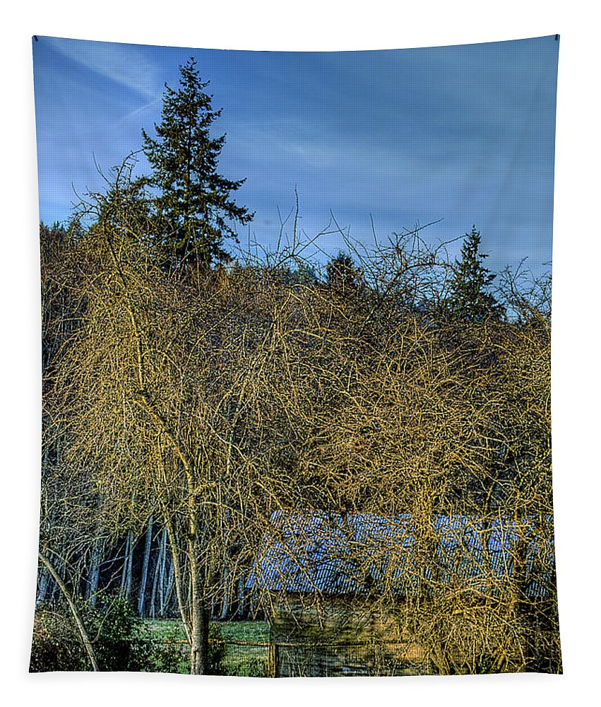 Barn Tapestry featuring the photograph Gig Harbor Barn by David Patterson