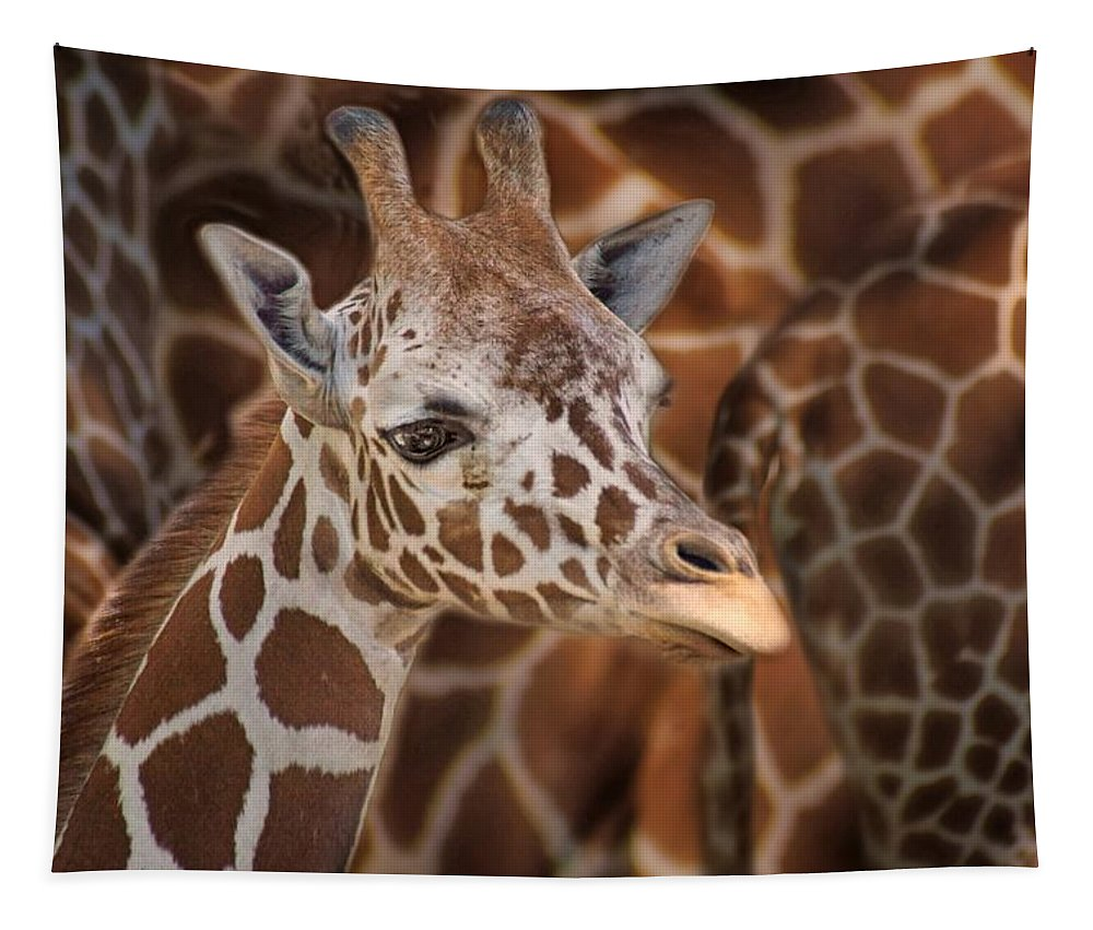 Giraffe Tapestry featuring the photograph Giraffe - Camouflage by Nikolyn McDonald