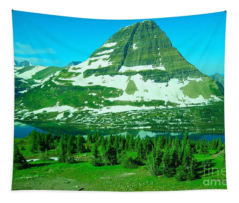Mountains Tapestry featuring the photograph Glacier Formed by Jeff Swan
