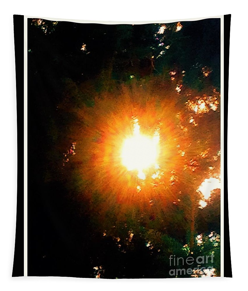 Sun/glow Tapestry featuring the photograph Glow Of Sun Through Pines by Debra Lynch