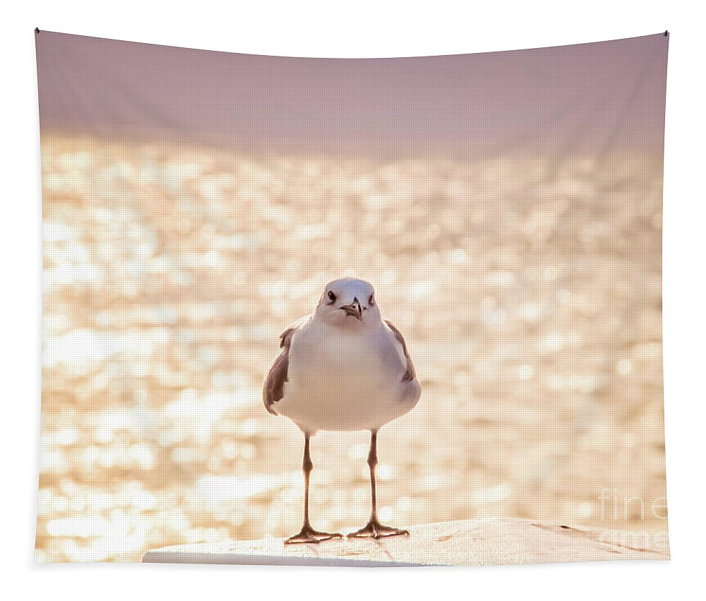 Animal Tapestry featuring the photograph Glowing Day by Pamela Williams