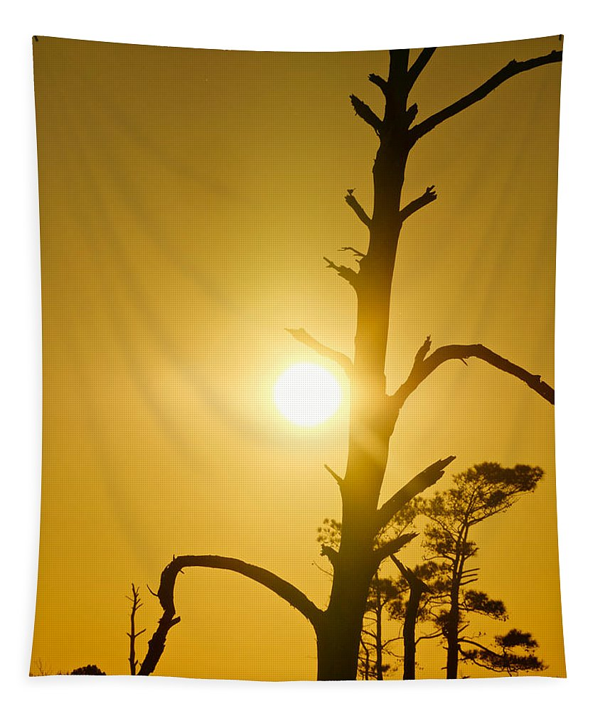 Silhouette Tapestry featuring the photograph Gold Marsh by Rachel Morrison