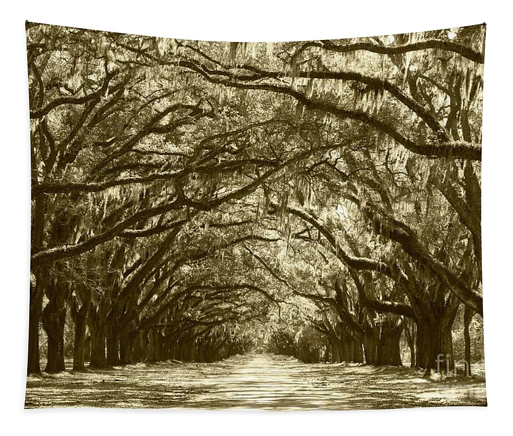 Live Oaks Tapestry featuring the photograph Golden Dream World by Carol Groenen