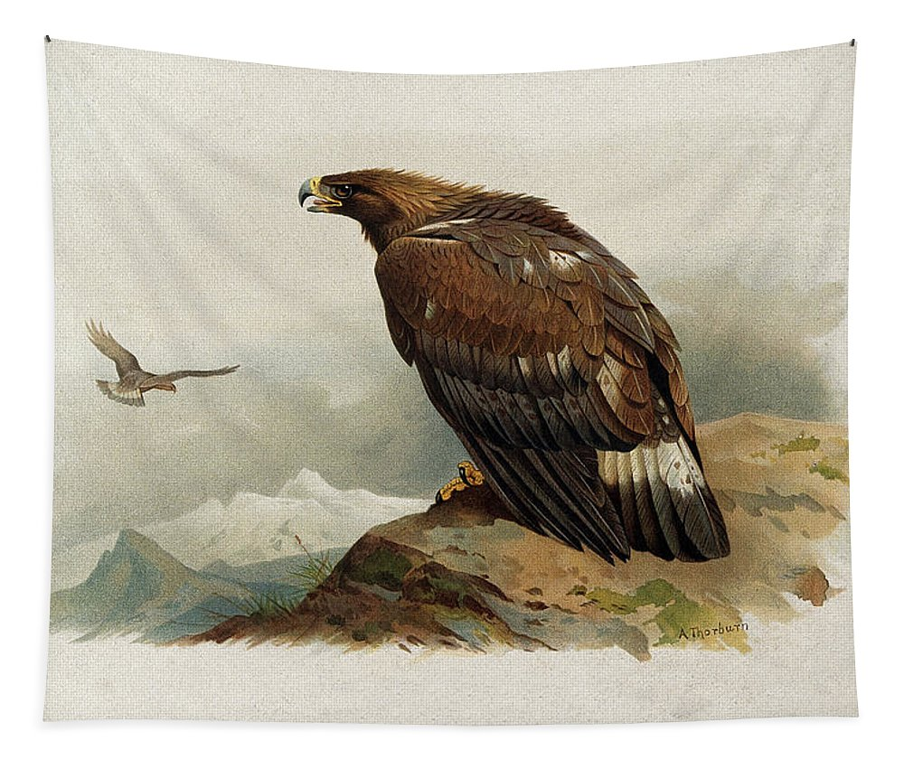Archibald Thorburn Tapestry featuring the mixed media Golden Eagle By Thorburn by Archibald Thorburn