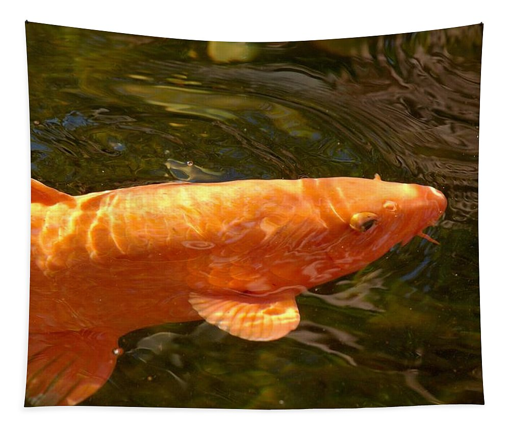 Loro Park Tapestry featuring the photograph Golden One by Jouko Lehto