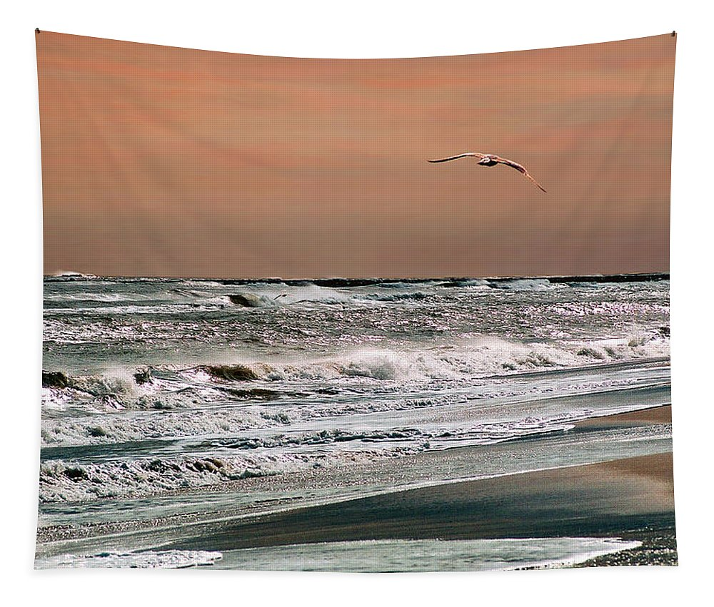 Seascape Tapestry featuring the photograph Golden Shore by Steve Karol