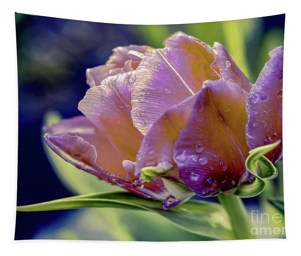 Tulip Tapestry featuring the photograph Golden Sunset Tulip by Jean OKeeffe Macro Abundance Art