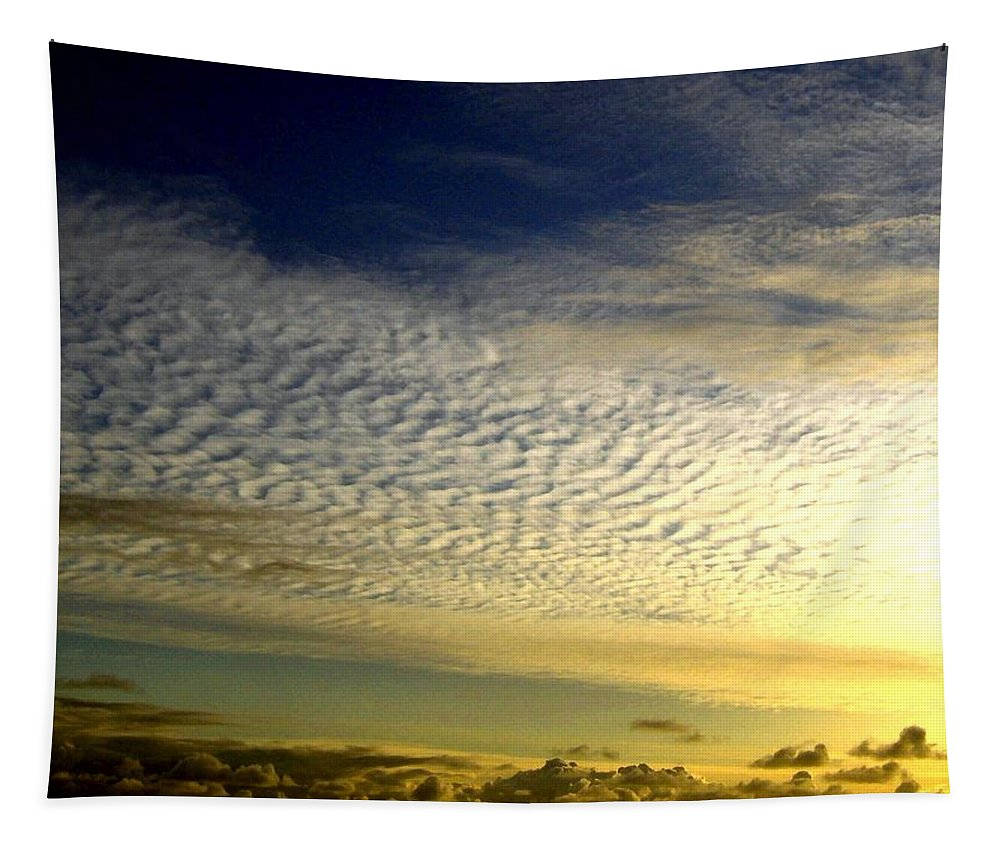Sunset Tapestry featuring the photograph Golden Sunset by Will Borden