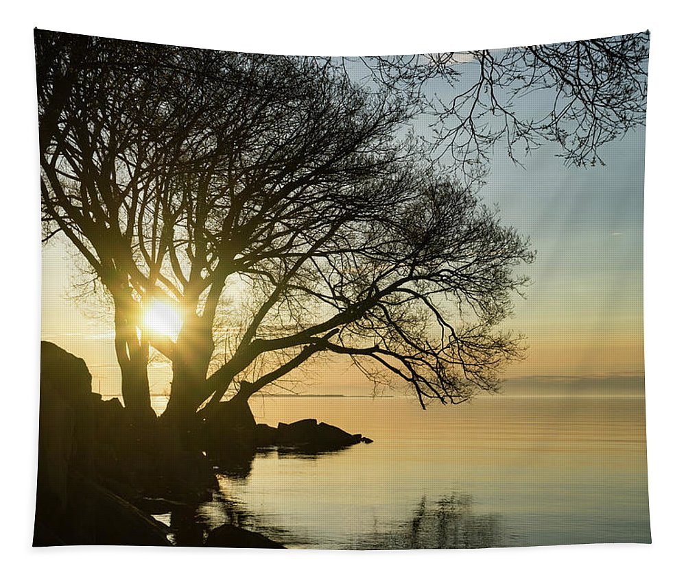 Georgia Mizuleva Tapestry featuring the photograph Golden Tranquility - Lacy Tree Silhouettes On The Lake Shore by Georgia Mizuleva