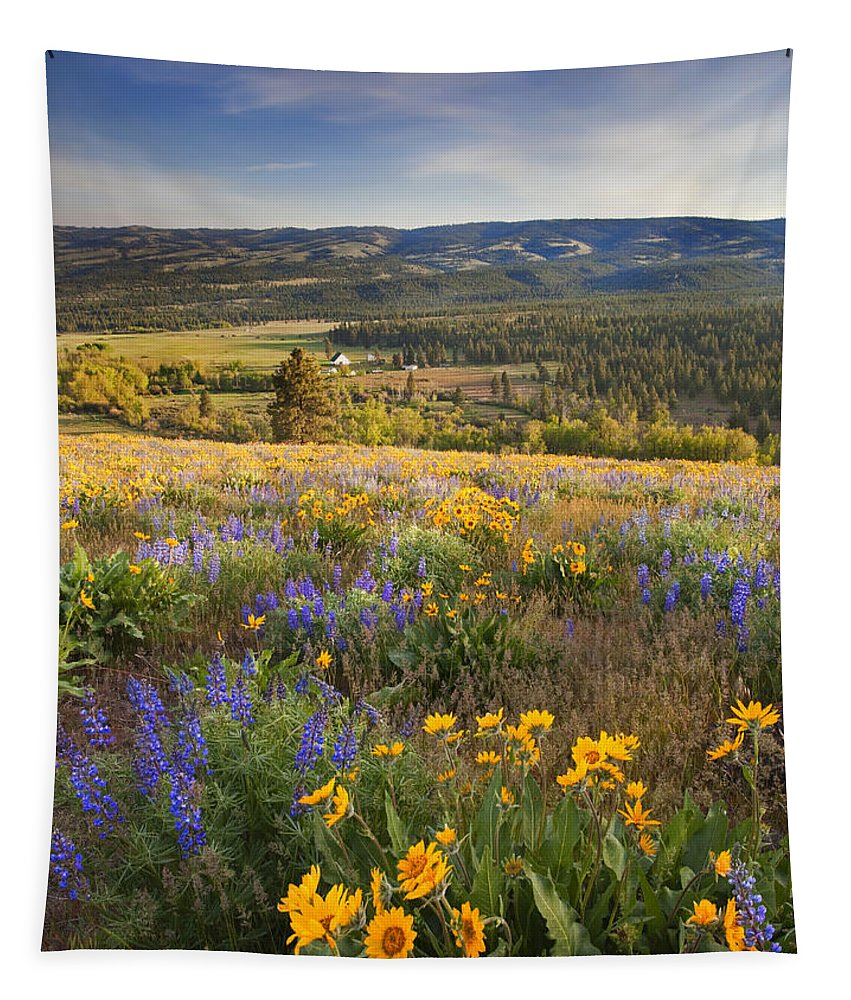 Wildflowers Tapestry featuring the photograph Golden Valley by Mike Dawson