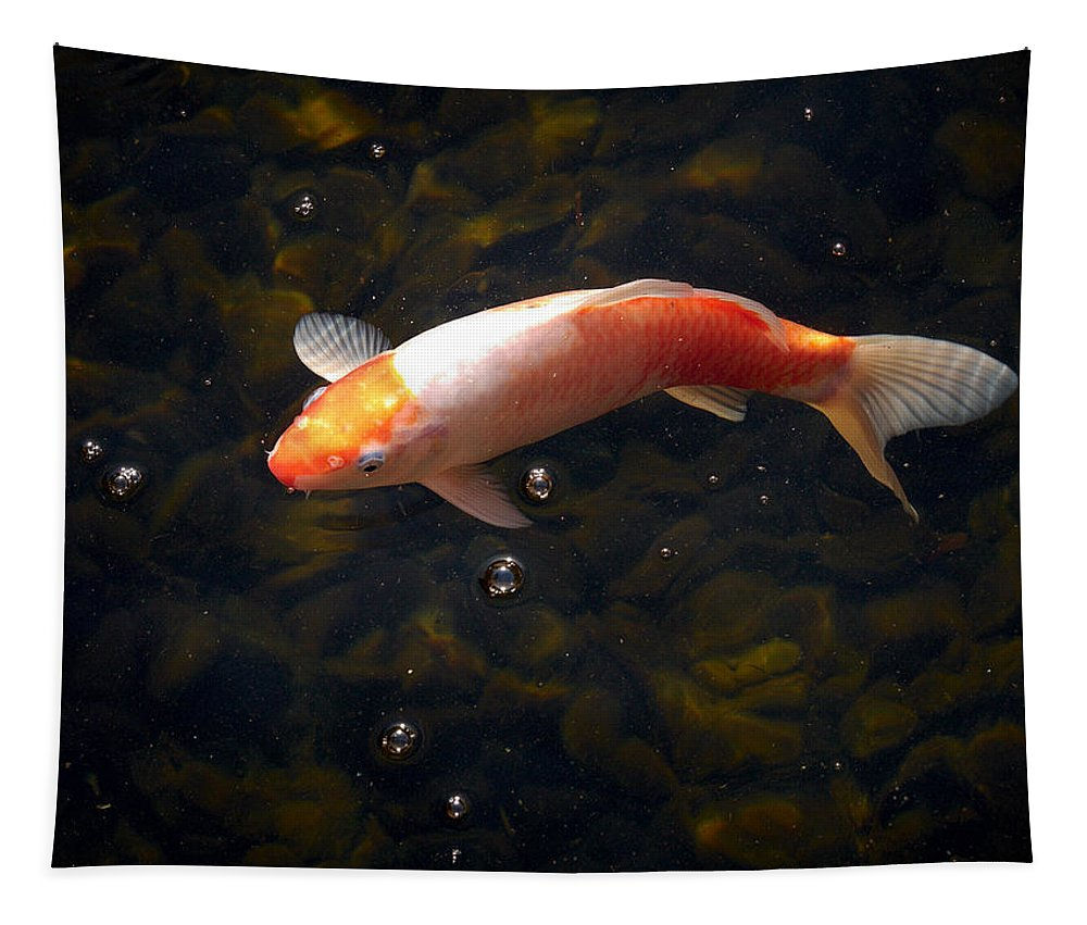 Loro Park Tapestry featuring the photograph Goldfish by Jouko Lehto