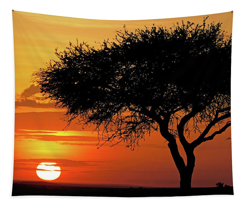 Africa Tapestry featuring the photograph Good Night, Maasai Mara by Juergen Weiss