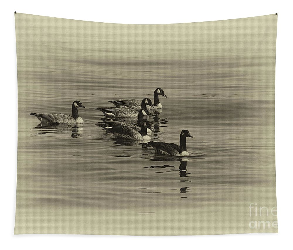 Goose Tapestry featuring the photograph Goose Bumps by William Norton