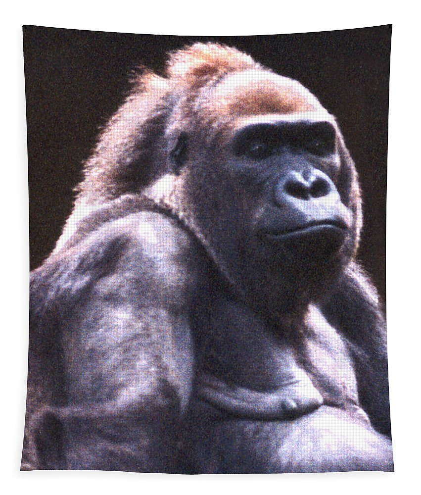 Gorilla Tapestry featuring the photograph Gorilla by Steve Karol