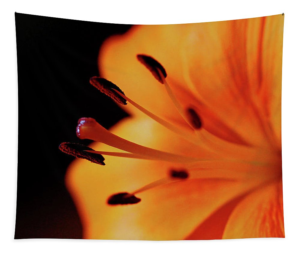 Lily Tapestry featuring the photograph Gracious by Debbie Oppermann