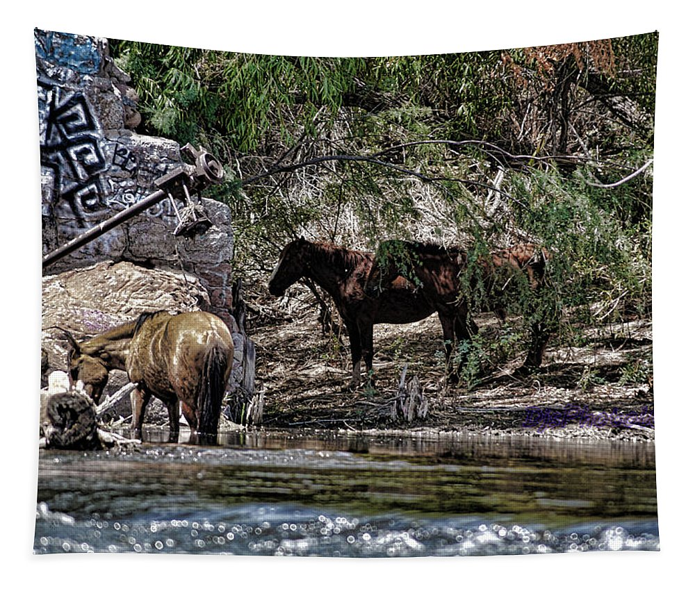 Graffiti Tapestry featuring the photograph Graffiti An Horses by Darryl Treon