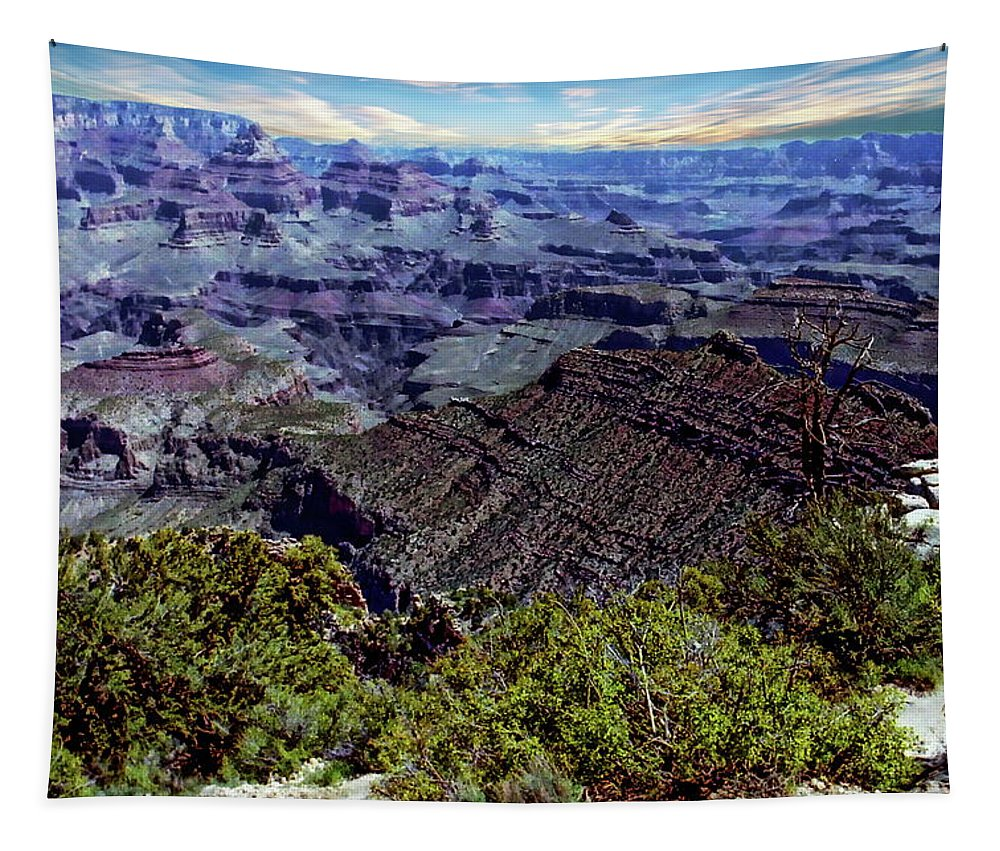 Amazing Tapestry featuring the photograph Grand Canyon National Park by Anthony Dezenzio