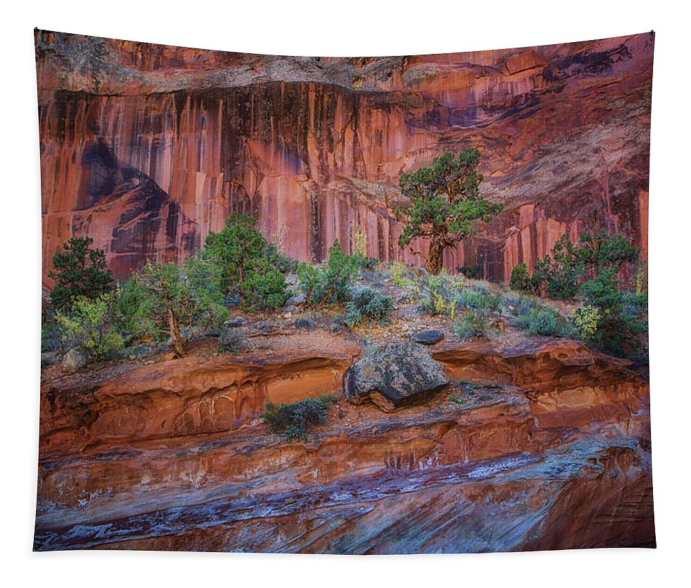 Grand Wash Tapestry featuring the photograph Grand Wash - Capitol Reef by Nikolyn McDonald
