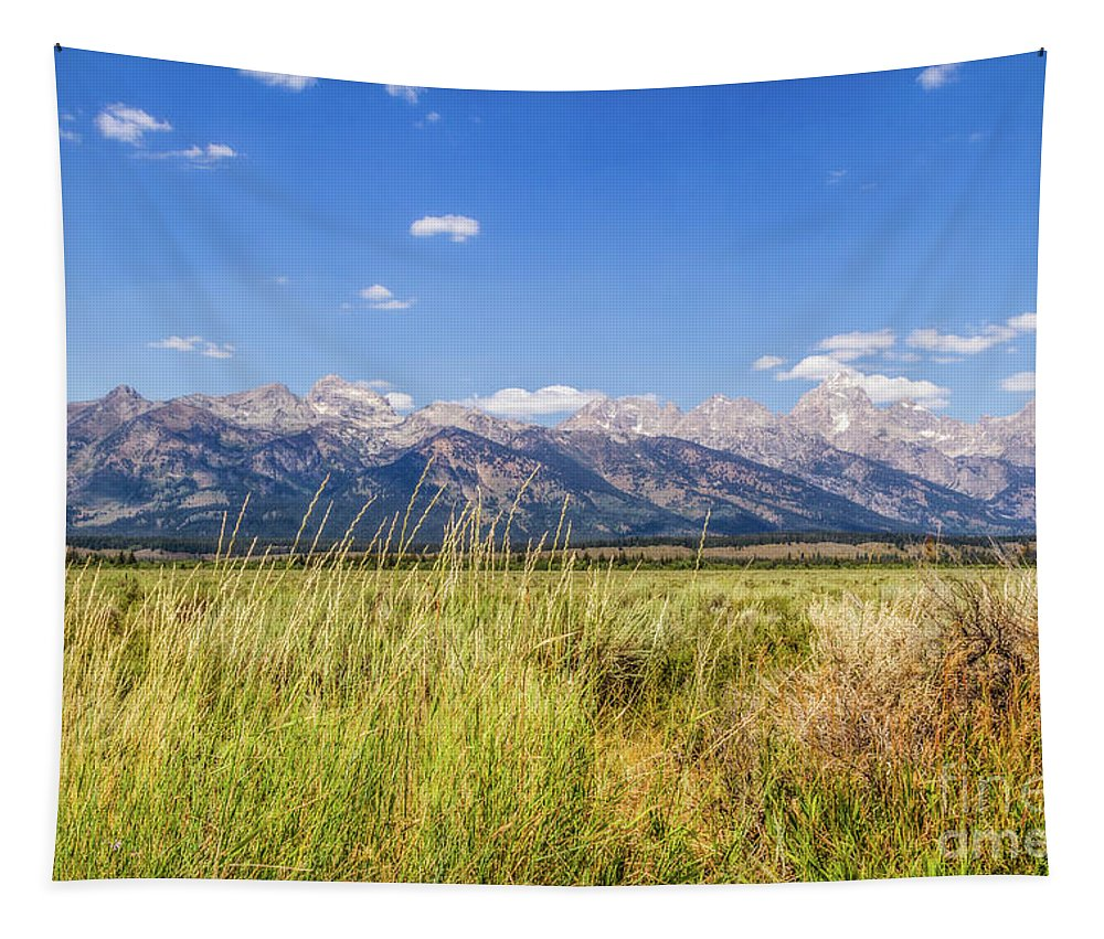Nature Tapestry featuring the photograph Grass In The Wind by Mirko Chianucci