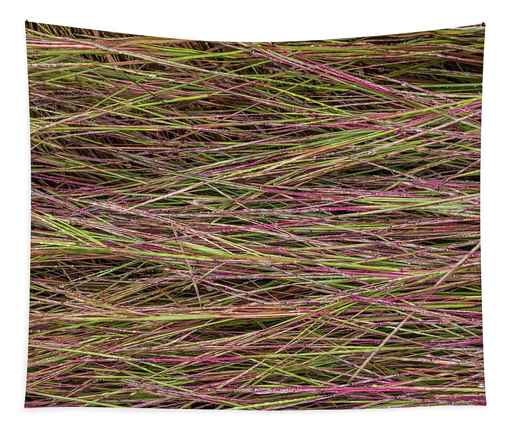Grass Tapestry featuring the photograph Grassy Abstract by Patti Deters