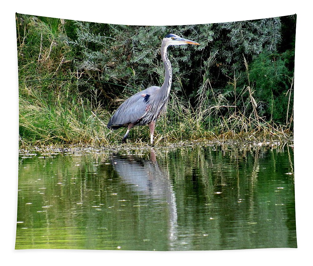 Great Blue Heron Tapestry featuring the photograph Great Blue Heron by Adrienne Wilson