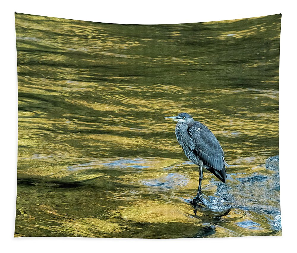 Great Blue Heron Tapestry featuring the photograph Great Blue Heron On A Golden River by Belinda Greb