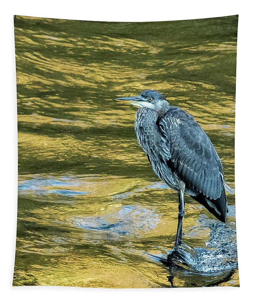 Great Blue Heron Tapestry featuring the photograph Great Blue Heron On A Golden River Vertical by Belinda Greb