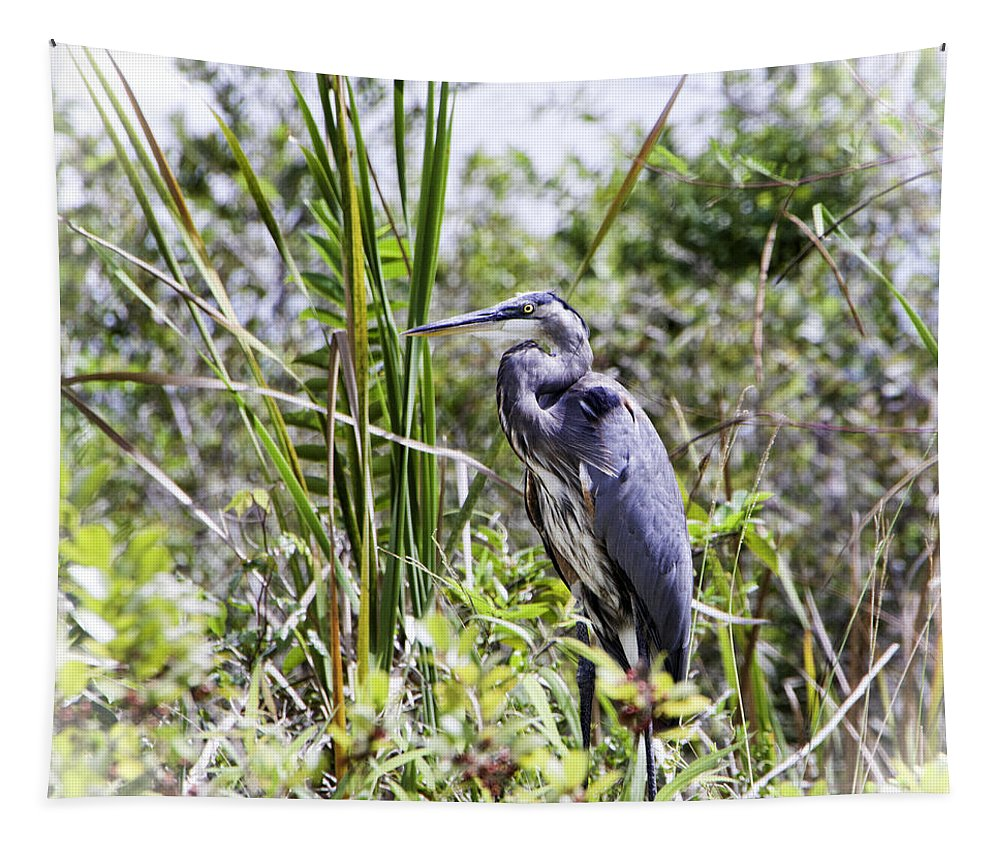 Great Blue Heron Tapestry featuring the photograph Great Blue Heron by Phyllis Taylor