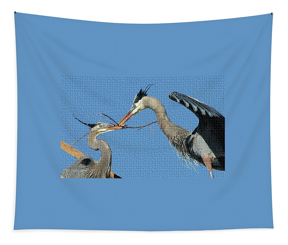 Great Blue Herons Build A Nest Tapestry featuring the photograph Great Blue Herons Build A Nest by Tom Janca