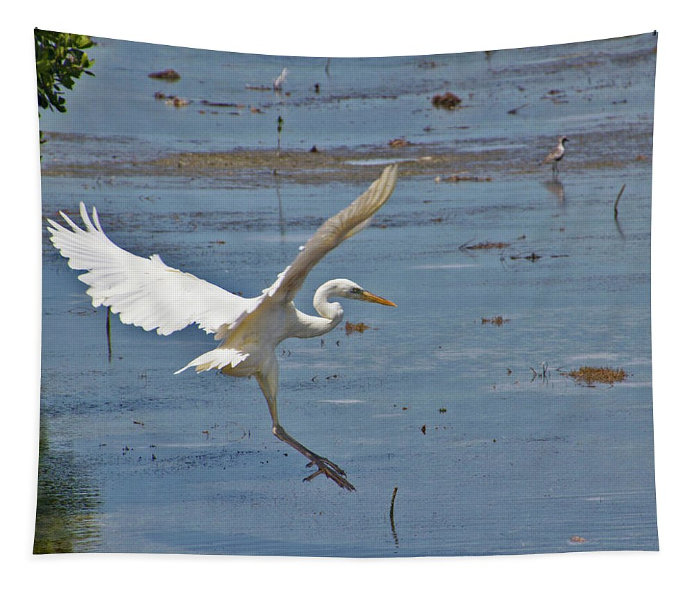 Bird Tapestry featuring the photograph Great Egret Ascending by Bob Slitzan