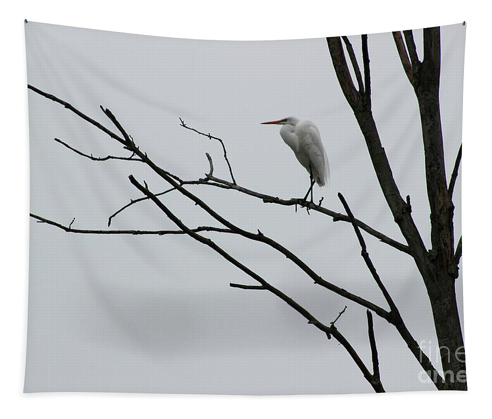 Egret Tapestry featuring the photograph Great Egret On High by Karen Adams