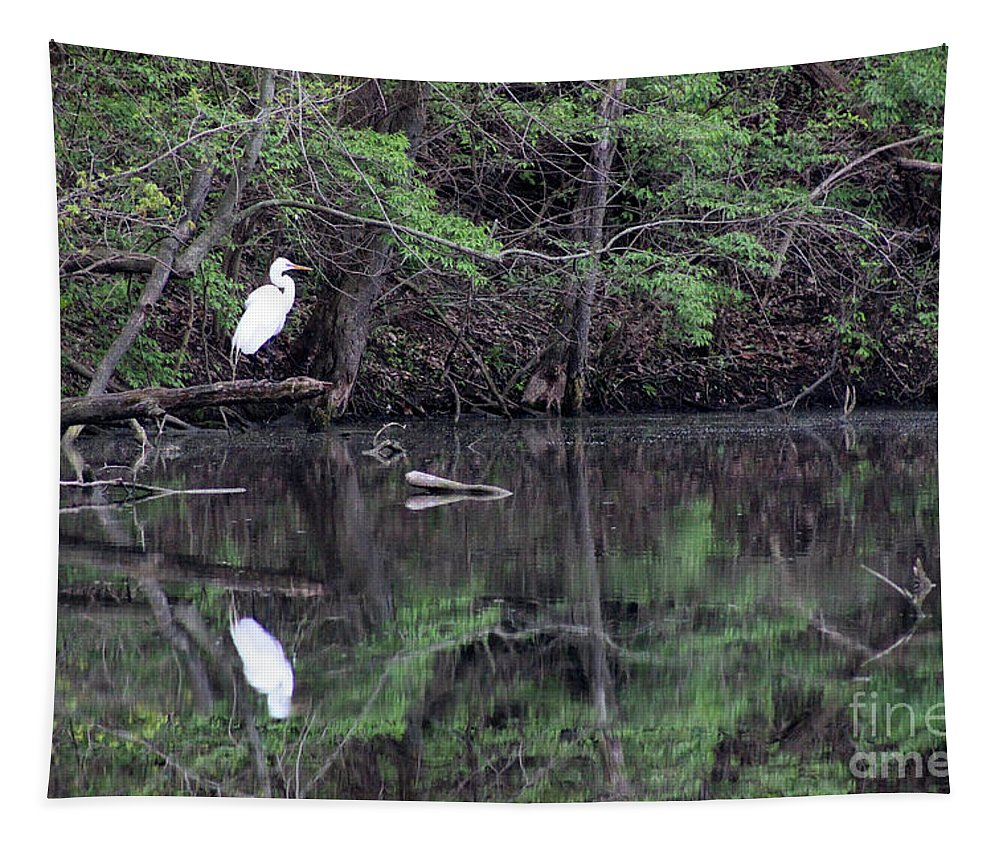 Egret Tapestry featuring the photograph Great Egret Resting by Karen Adams