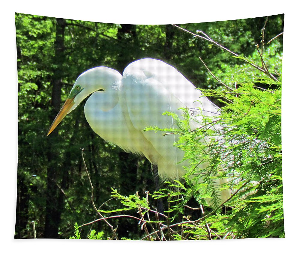 White Egret Tapestry featuring the photograph Great White Egret by Cynthia Guinn