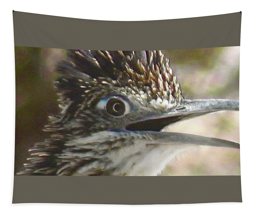 Arizona Tapestry featuring the photograph Greater Roadrunner Portrait by Judy Kennedy