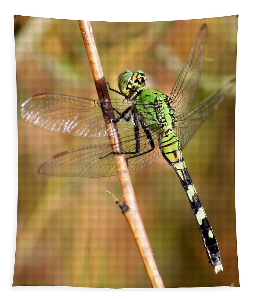 Dragonfly Tapestry featuring the photograph Green Dragonfly Closeup by Carol Groenen