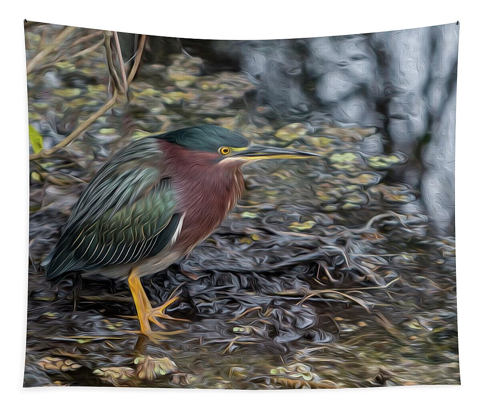 Green Heron Tapestry featuring the photograph Green Heron Patience by Patti Deters