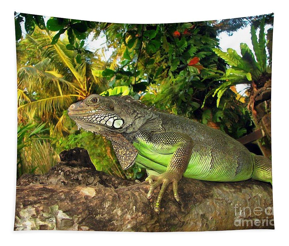 Green Iguana Tapestry featuring the pyrography Green Iguana by Sergey Lukashin