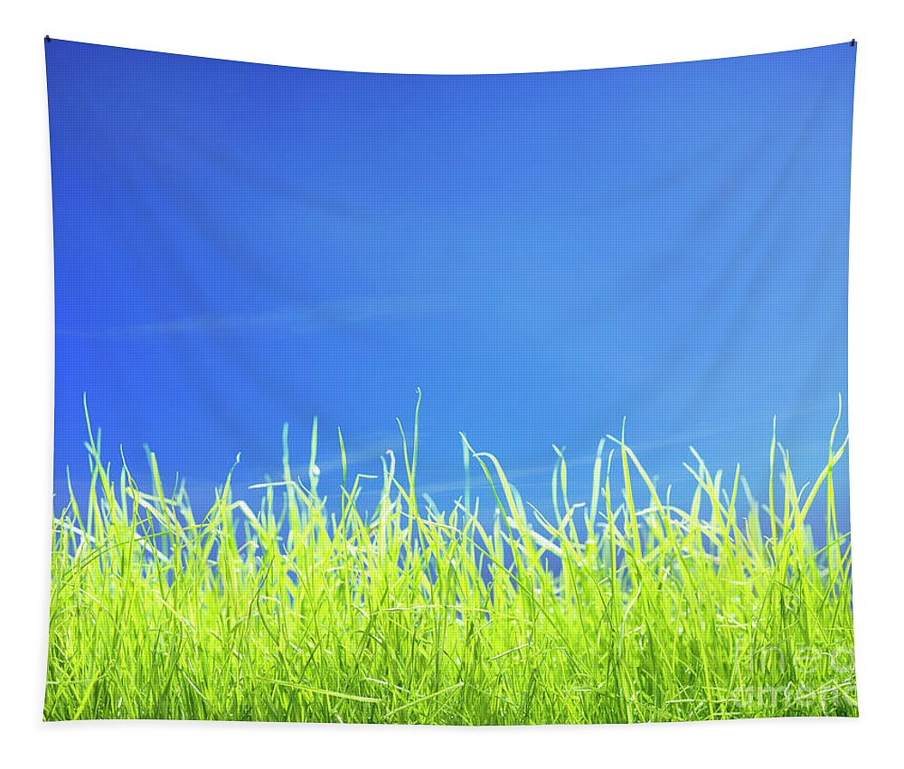 Grass Tapestry featuring the photograph Green Lawn Grass Under Blue Sky by Awen Fine Art Prints