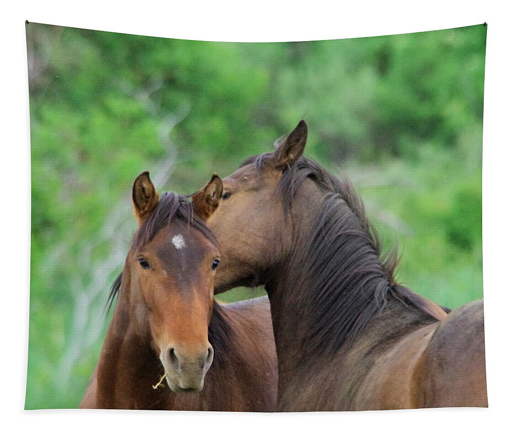 Horses Tapestry featuring the photograph Grooming Horses by Jeff Swan