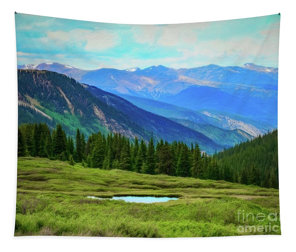 Guanella Pass Tapestry featuring the photograph Guanella Pass Impression by Jon Burch Photography