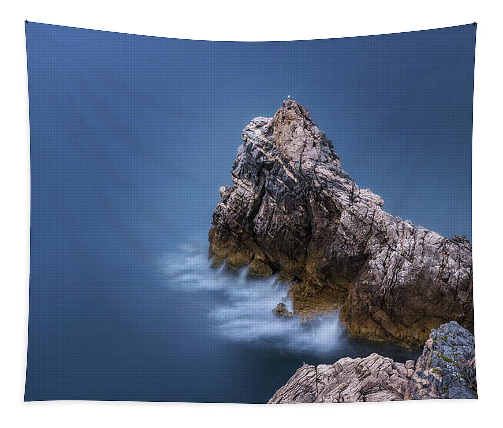 Sea Tapestry featuring the photograph Guardian Of The Sea by Matteo Viviani