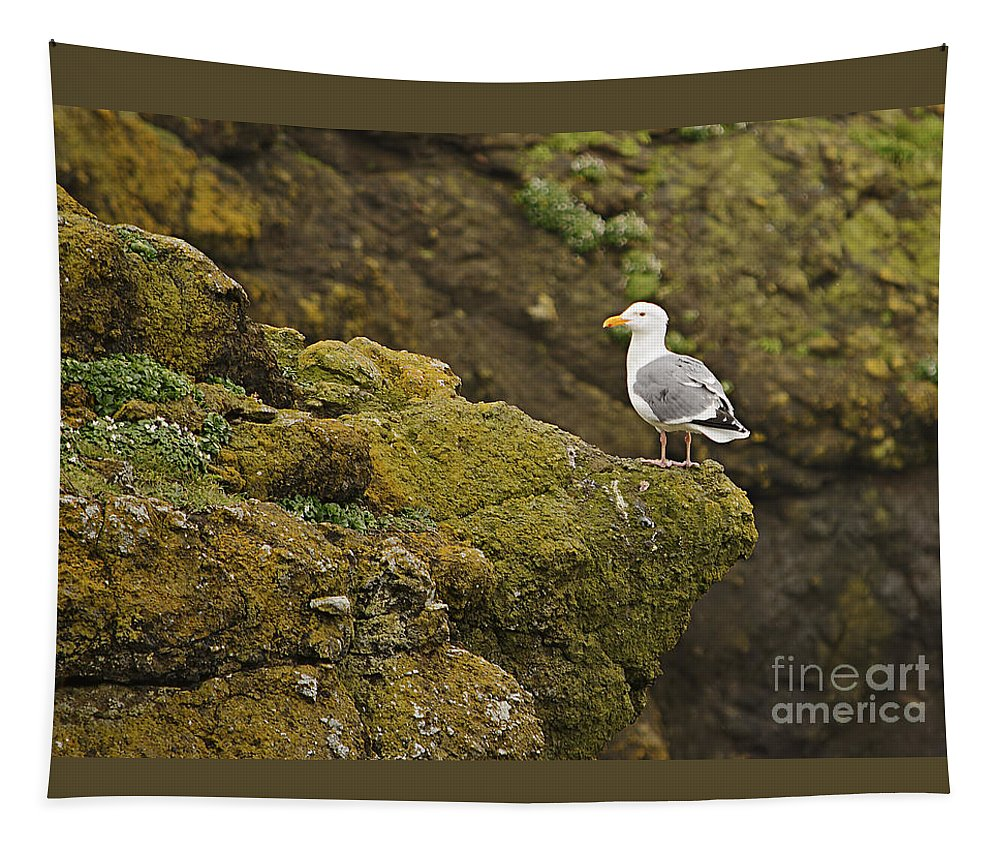 Animal Tapestry featuring the photograph Gull On Cliff Edge by Marv Vandehey