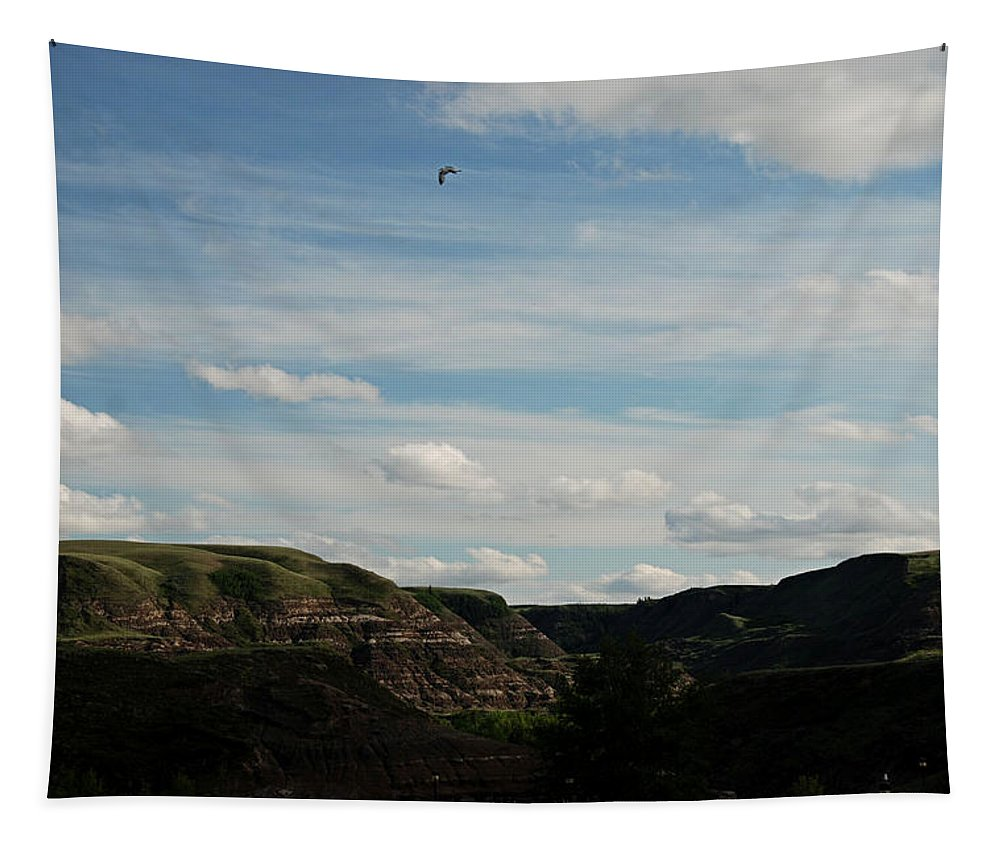 Bird Tapestry featuring the photograph Gull Over The Badlands by Katherine Nutt