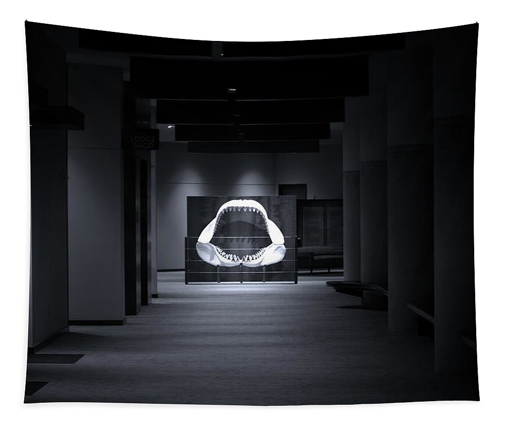 Megalodon Tapestry featuring the photograph Hall Of The Megalodon by Mark Andrew Thomas